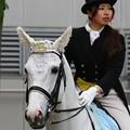 写真: 川崎競馬の誘導馬05月開催 誕生日記念レースVer-08-large