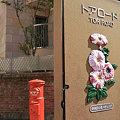 写真: 神戸の街角‥♪