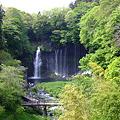 Photos: 白糸の滝 2011.5.8-3