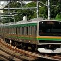 Photos: 長~い15両編成の湘南新宿ライン