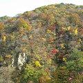写真: 鳴子峡5