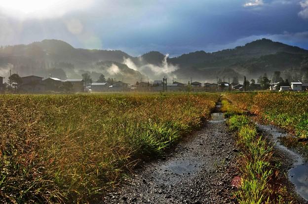 雨上がりの朝に~初秋