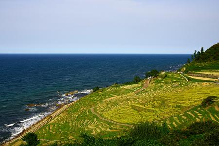 日本海と白米千枚田