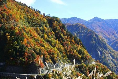 国見展望台から(1)    白山スーパー林道