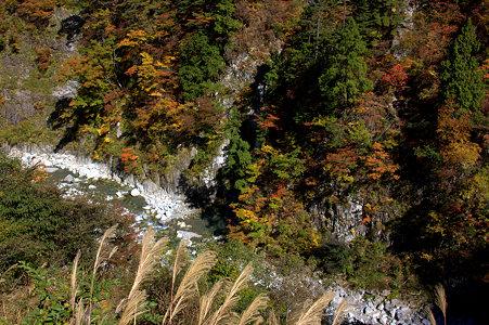 蛇谷川と紅葉  白山スーパー林道