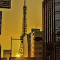 写真: 東京タワー落日