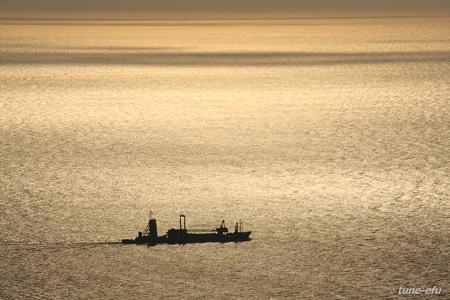 金色の海を往く