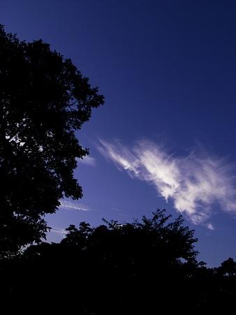 2009-08-16の空2