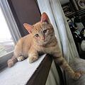 Photos: IMG_7398