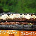 写真: ギネス世界記録にチャレンジ 世界最大のハンバーガーを作る!17