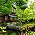 写真: 京都御所-拾翠亭