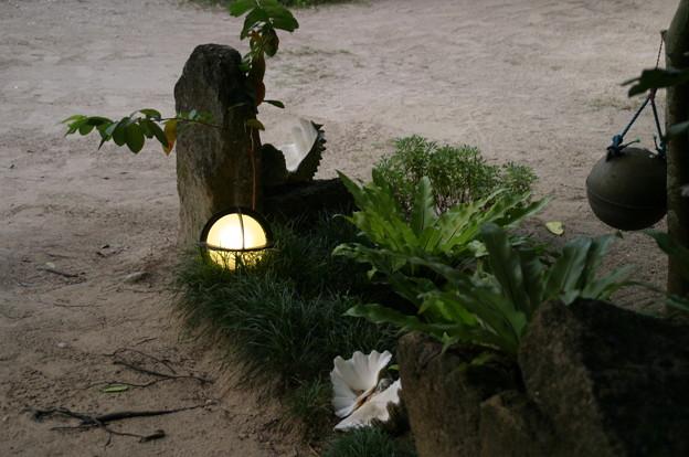 備瀬部落民家の庭