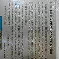 Photos: 拝殿にあったイチイガシらの解説文