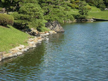 浜離宮の池