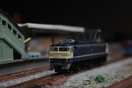 IMGP7498