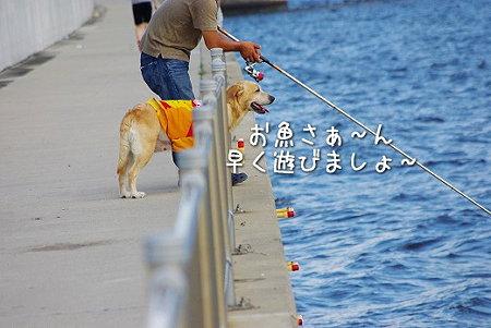 s-myu2009_0702(257)
