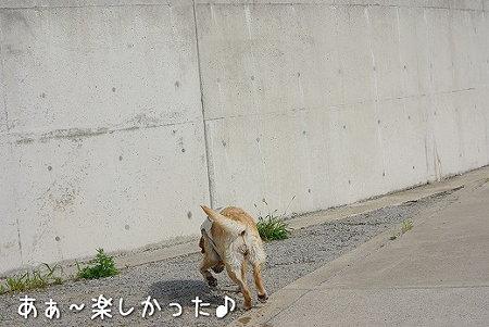 s-myu2009_0718(058)