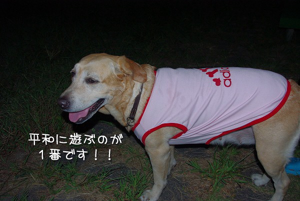 s-myu2009_0831(031)