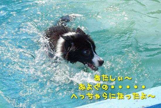 s-myu2009_0927(118)