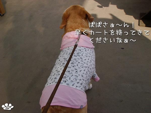 s-myu2009_1030(014)