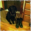 Ellie and My Boots