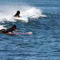 写真: 波に乗る