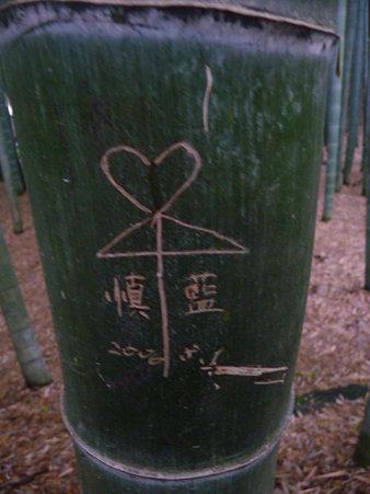 090625-イタズラで傷付いた竹 (2)