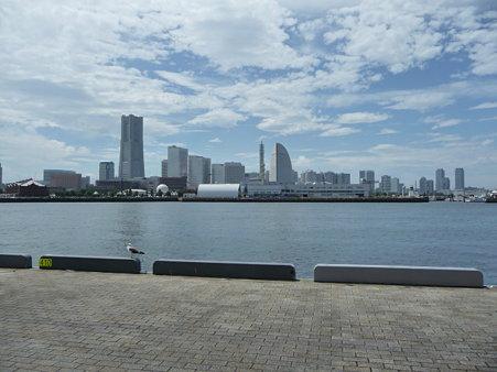 090725-大桟橋 (12)