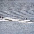 写真: 水上スキー