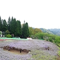 Photos: 20110424_134721_raw