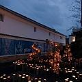Photos: 星の宵(1)