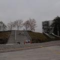 写真: 東京工業大学 新附属図書館 事務棟・緑地