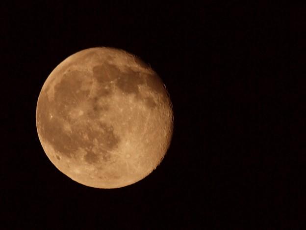 9月6日の月(35mm換算600mm)