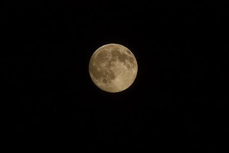 moons
