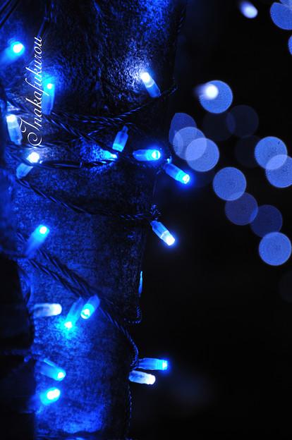 青く輝くモノ