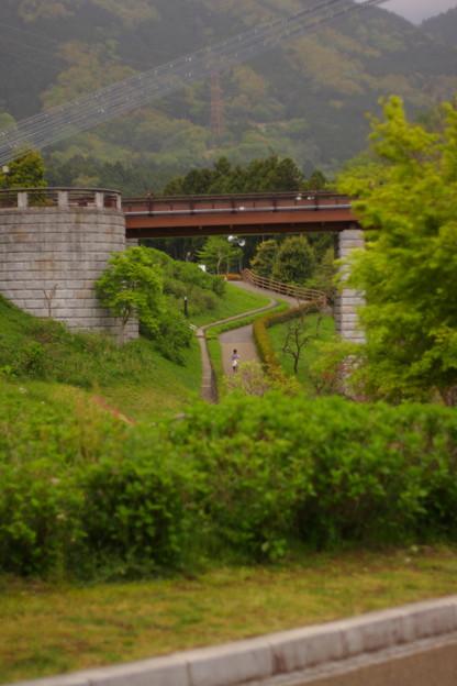 写真: 遠くの坂道
