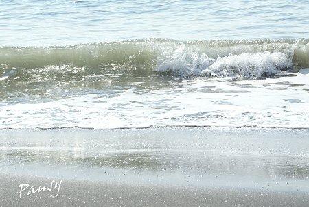 砂にも煌めき・・