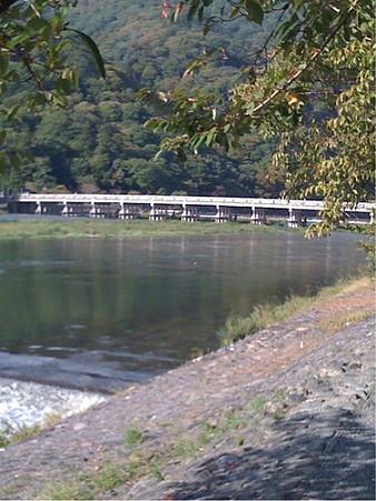 2009年10月11日 嵐山01
