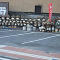 Photos: タヌキいっぱい