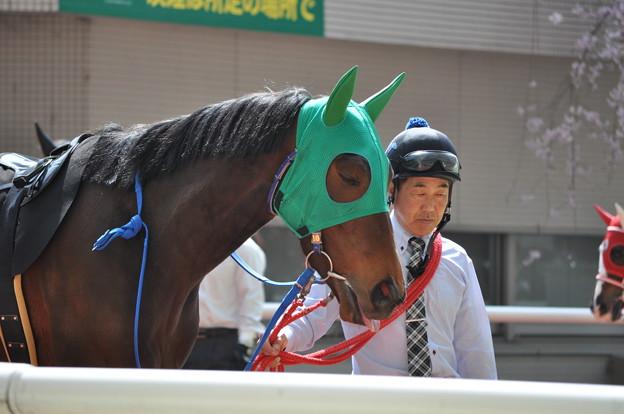 Tsurumaru Onepiece 01