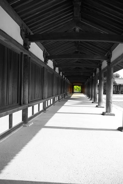 写真: 法隆寺 柱