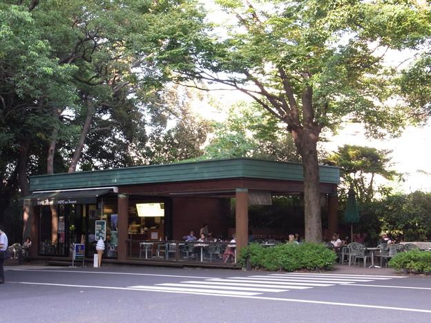 【東京|カフェ】 明治神宮 杜のカフェ