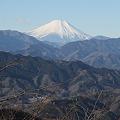 110131-115高尾山山頂からの富士山