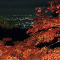 写真: 大山寺の紅葉と夜景