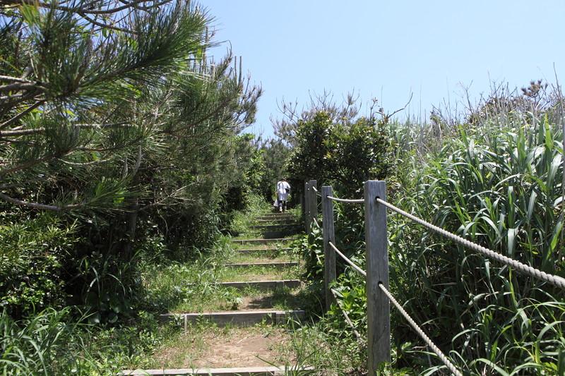 IMG_6863神津島__天上山登山と島巡り