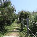 写真: IMG_6863神津島__天上山登山と島巡り