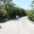 写真: IMG_6878神津島__天上山登山と島巡り