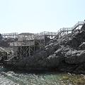 写真: IMG_6909神津島__天上山登山と島巡り