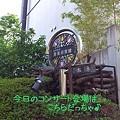 Photos: コンサート会場は 松本記念音楽迎賓館だっちゃ♪