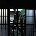 Photos: 手水屋の青